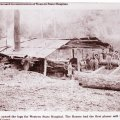 image 55293-20-1886-pine-top-lumber-mill-logs-for-western-jpg
